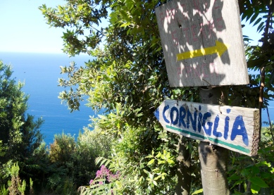 Hiking up from Corniglia